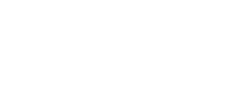 Fortress Festival (Press Release)